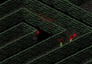 Course de rapidité, le labyrinthe